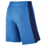 Original New Arrival NIKE Men's Shorts Sportswear